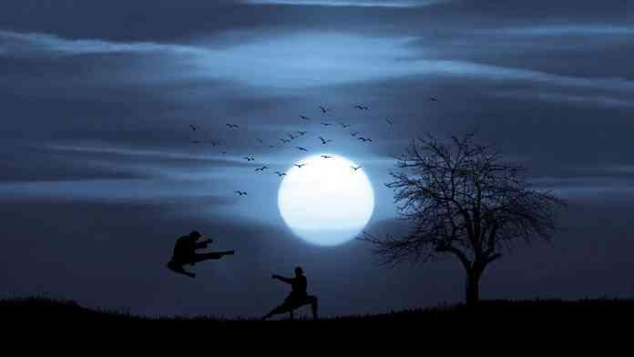 Artistes martiaux sous le clair de lune