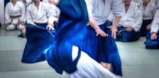 aikido yamada sensei