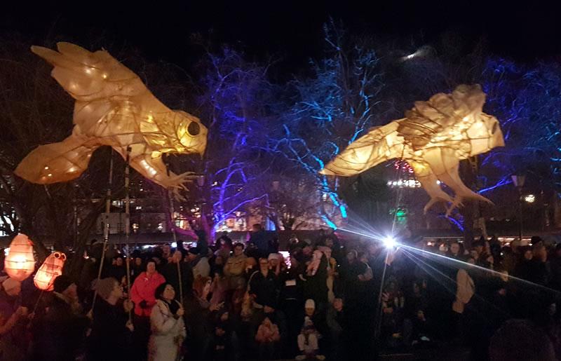 Dunedin Midwinter Carnival 2017