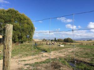 Southland farm 2