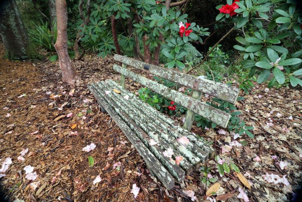 2017_10_15 Botanical Gardens 12