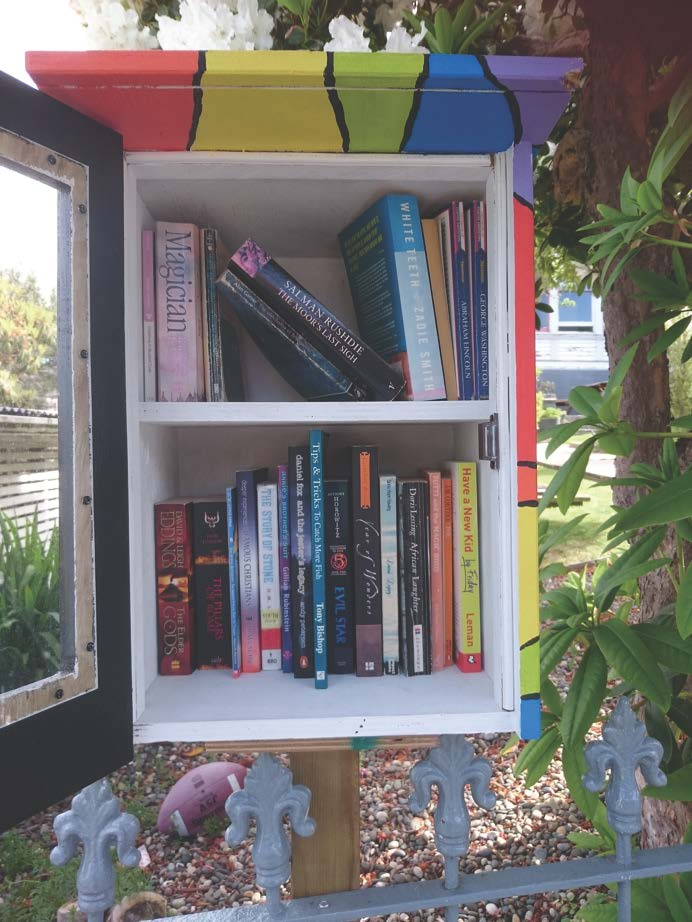Lilliput Libraries-2