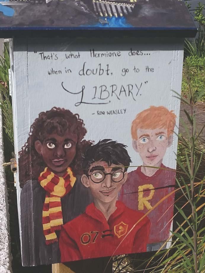 Lilliput Libraries-4