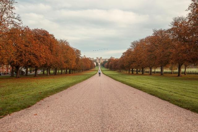 The path to Windsor Castle
