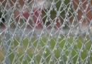 Mesh Panel Perimeter Defense