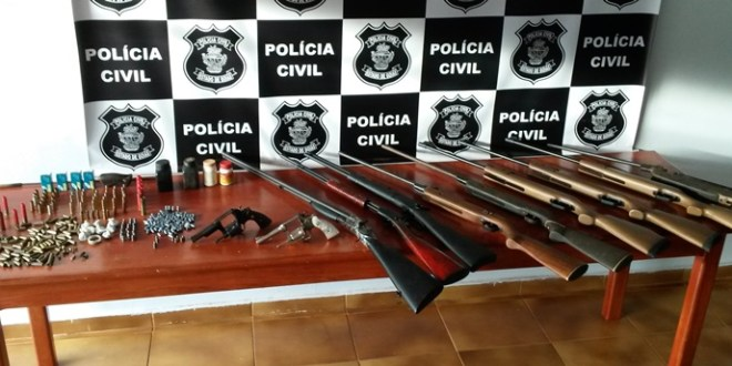 Polícia Civil de Vicentinópolis se destaca com apreensão de armas de fogo