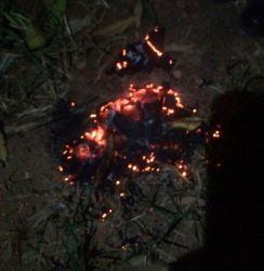 Provável camisa queimada