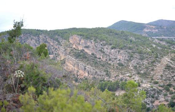 trail recorrido-1