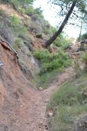 trail recorrido-5