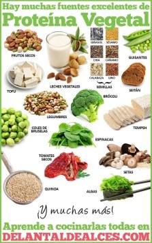 proteina-vegetal