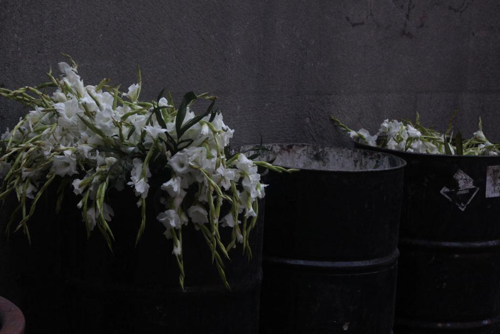Flores de panteón