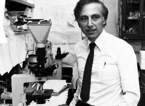 ROBERT GALLO: CORONAVIRUS TERMOLABILE