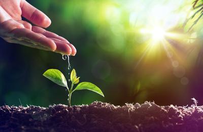 Agroalimentare, da Ismea pacchetto finanziamenti agevolati a imprese