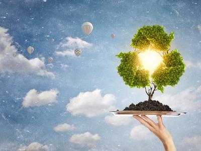 5 impegni concreti per diventare 'Ambasciatori della sostenibilità'