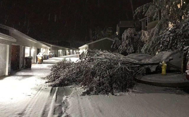 immagine 1 articolo meteo stati uniti bufere neve su alaska e washington