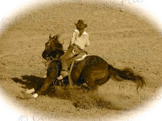 Cowgirl; notice the leaning of the horse, his tail, and the dirt being kicked up.