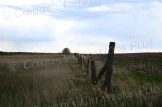 A fencepost leads the eye to the horizon in southeastern Nebraska.