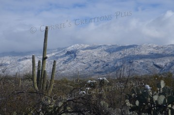 The Rincon Mountains in southeastern Arizona