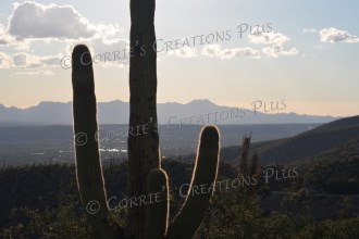 Taken from the Catalina Mountain foothills looking west/southwest in southeastern Arizona