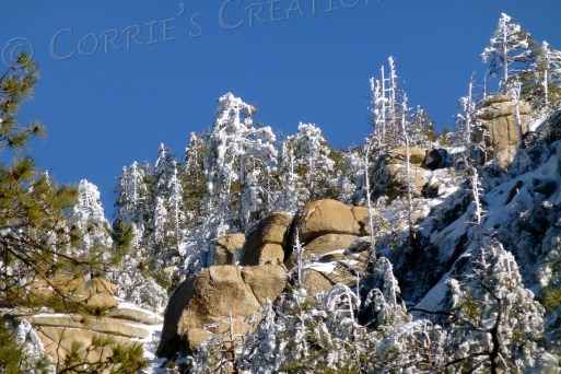 A beautiful, clear day in the Catalina Mountains near Tucson