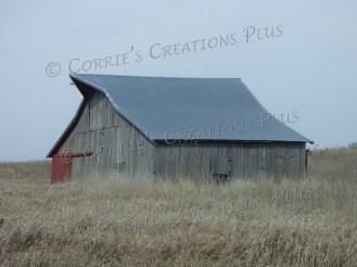 Photo taken in southeastern Nebraska