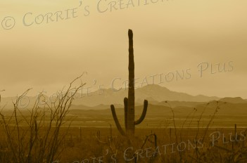 A sepia version of a sunset over the Tucson Mountains