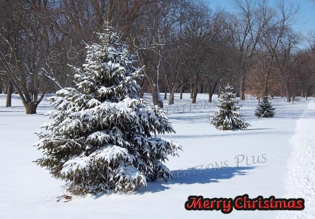 Merry Christmas from southeastern Nebraska