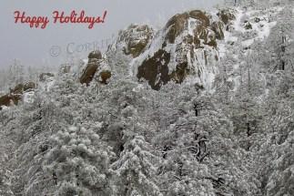 Catalina Mountains in southeastern Arizona