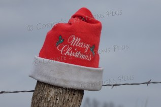 A different angle on this stocking cap photo