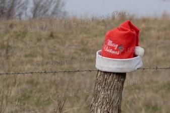 Someone put a stocking cap on a fencepost for the holidays. Photo taken near Lewiston, Nebraska