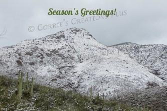 Snow-capped Rincon Mountains in southeastern Arizona