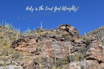 Sabino Canyon in southeastern Arizona