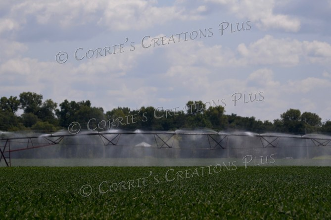 Center-point irrigation in full swing in southeastern Nebraska
