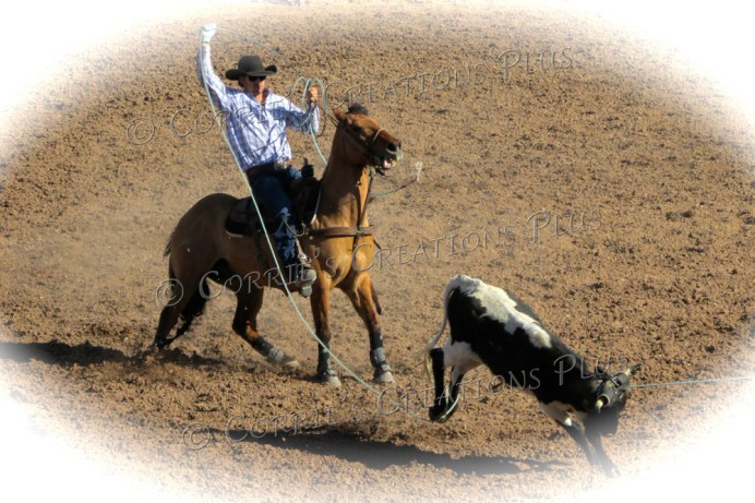 Ropin' and Ridin'