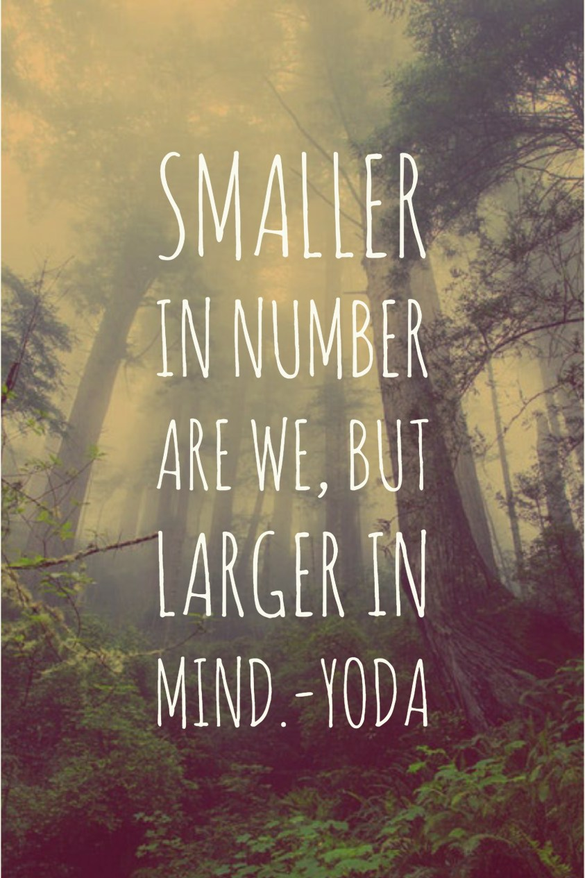 Smaller in number are we, but larger in mind.-Yoda