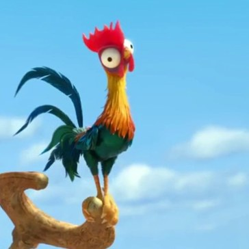 Heihei the worlds stupidest chicken
