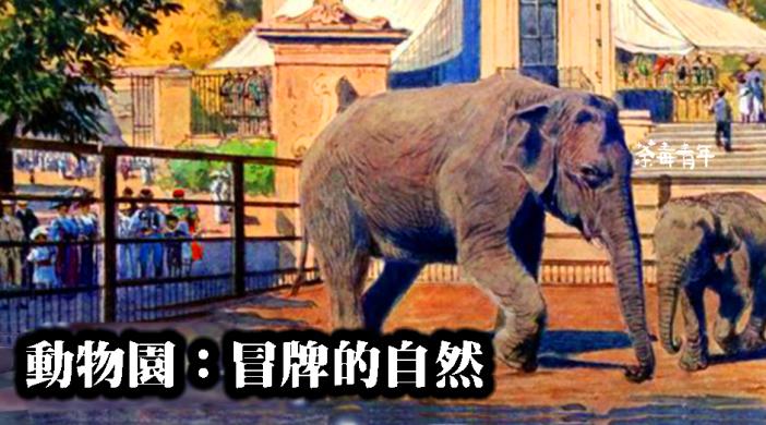 動物園:冒牌的「自然世界」 1