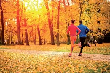 autumn_runners