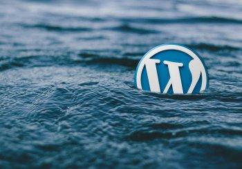Blog di successo con WordPress (strategie e strumenti)