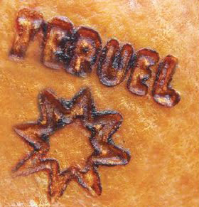 Estrella marcada a fuego jamon de teruel
