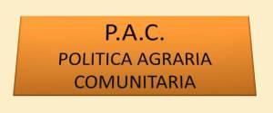 pac2010