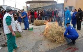 Jornada de la Matanza Tradicional en el Puente del Congosto