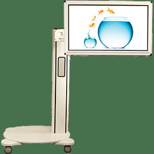 fMRI Displays