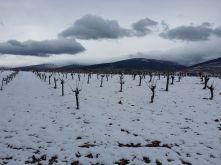Nevada en Cortijo El Cura Alpujarra Enero 2017