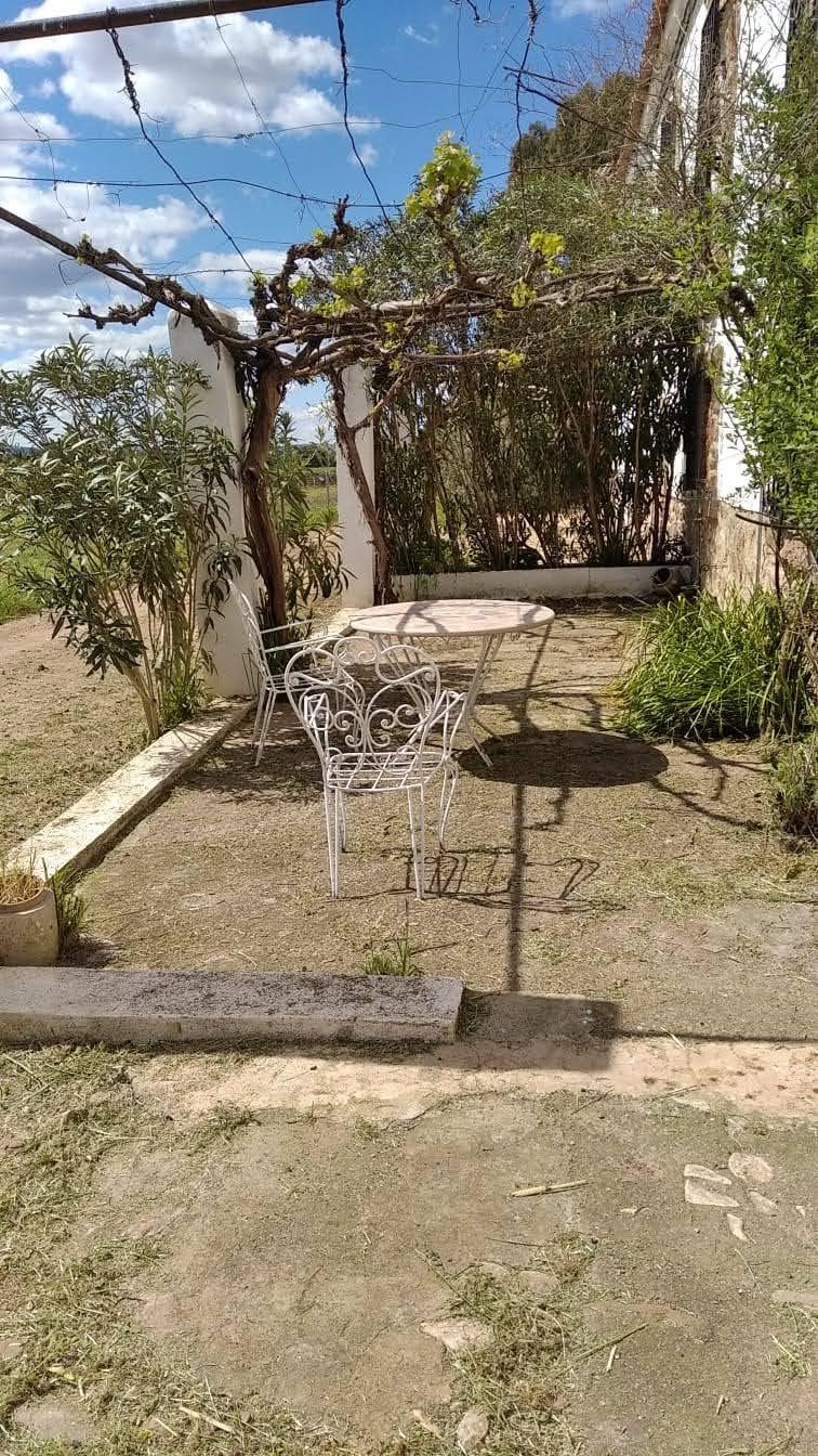 patio bajo la parra cortijo vizconde