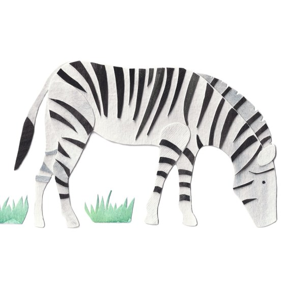 Zebra Assembled Watercolor Print by Cortney North