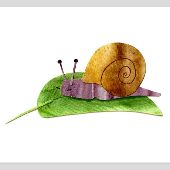 Snail Assembled Watercolor Painting by Cortney North