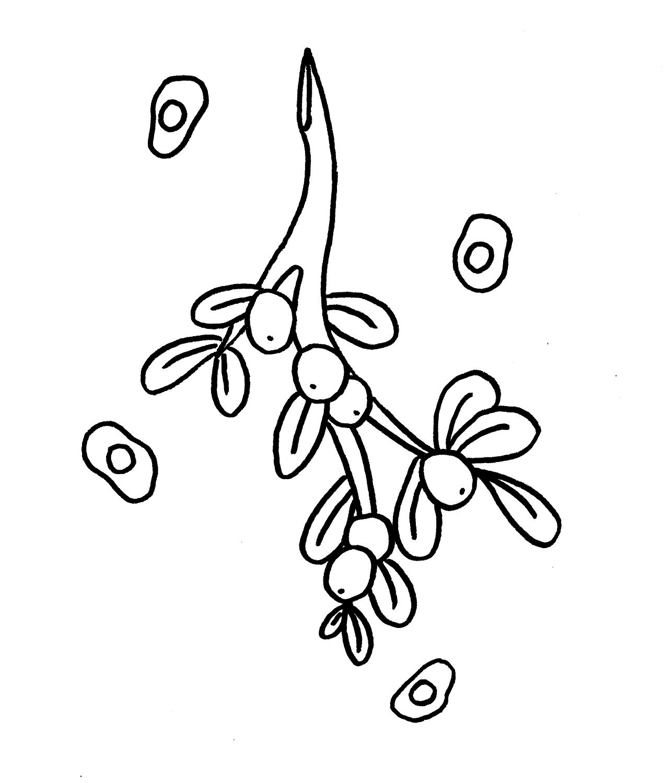 mistletoe coloring page