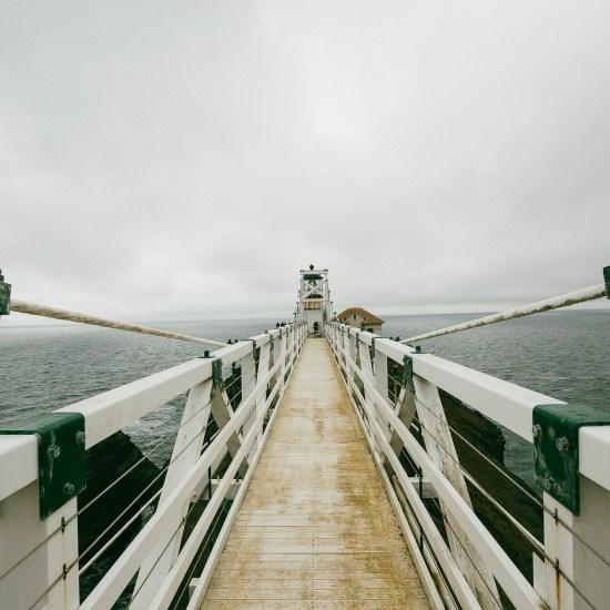 Bridging PBIS and MTSS