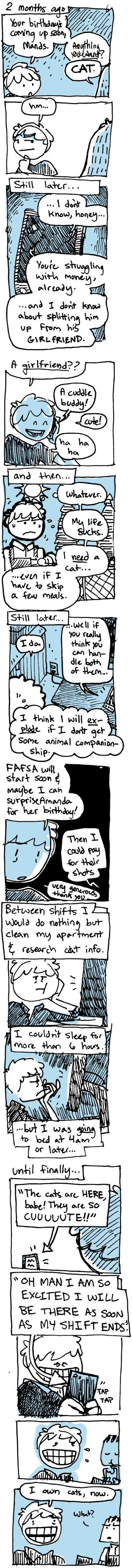 Day 900 – Feline 2
